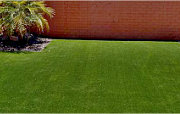 Artificial Synthetic Grass Turf Astroturf